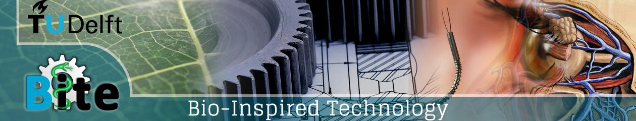 BITE – Bio-Inspired Technology Group